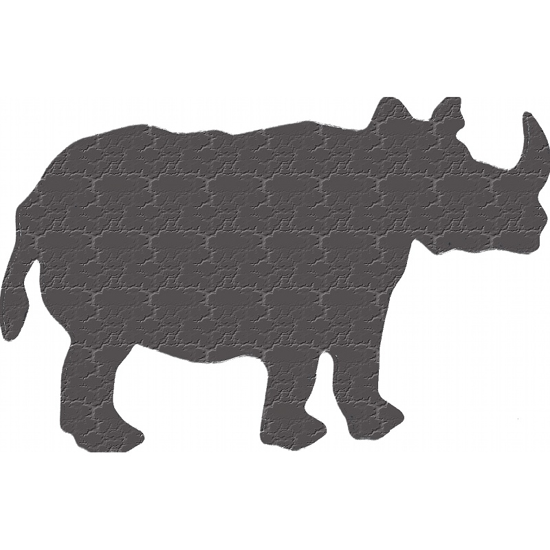 More about rhinoceros