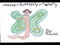 Motterfly image