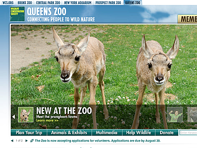 Queens Zoo Wildlife Center